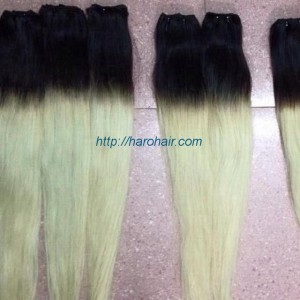 Vietnam natural hair - Vietnamese human hair - Ombre hair